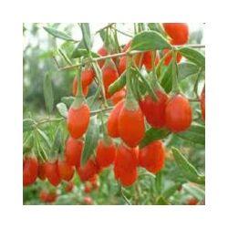 Дауна характерна тахикардия с синдромом или брадикардия плода для